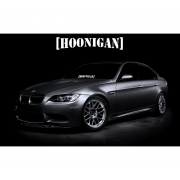 Sticker Parbriz Hoonigan