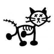 Stickere auto Pisica